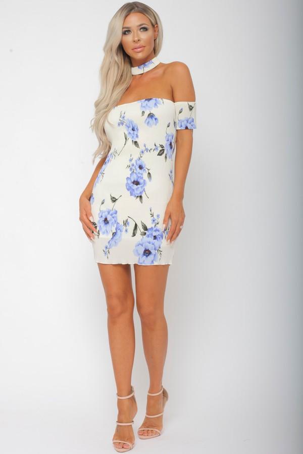 Kate Floral Print Mini Bodycon Dress in Blue