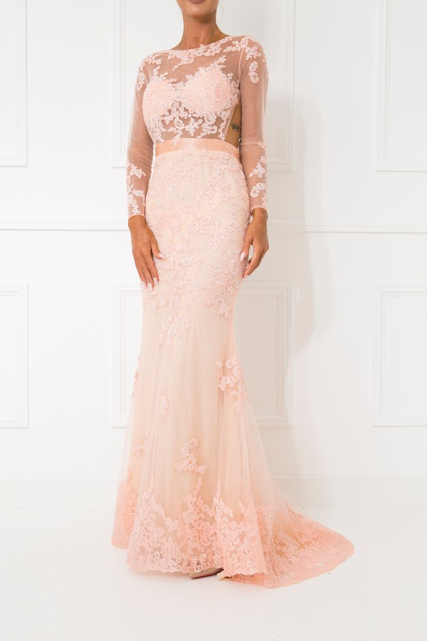 Serena Long Sleeve Mesh Lace Gown in Peach - Cari\'s Closet